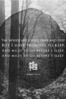 From Robert Frost's poem Stopping by Woods on a Snowy Evening